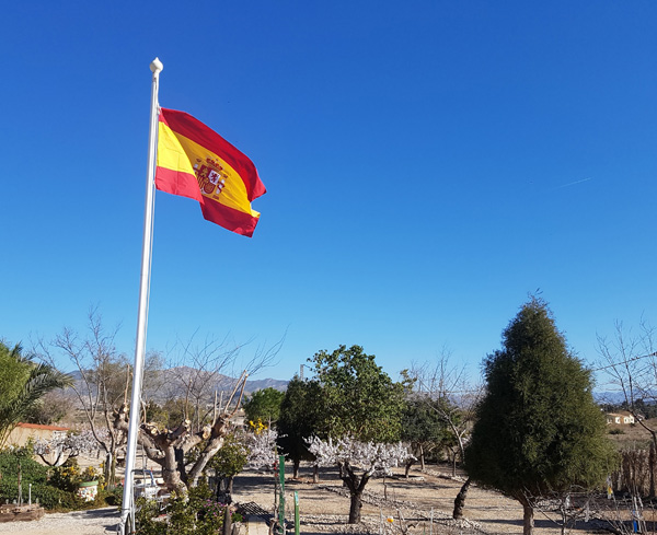 Bandera de España en finca privada de Toni Gil. Foto: T. GIL